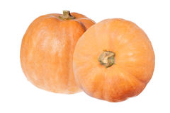 Two orange pumpkins isolated on white Stock Photography