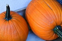 Two orange pumpkins. On a table Royalty Free Stock Photos