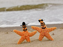Two Orange Starfish with Smiling Faces Royalty Free Stock Photo