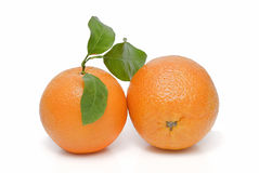 Two oranges. stock images