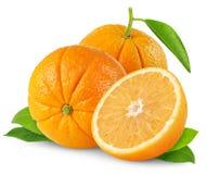 Two oranges Royalty Free Stock Photos