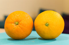 Two oranges Royalty Free Stock Image