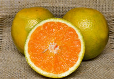 Two Oranges Closeup. And a Half orange in first plan Royalty Free Stock Images
