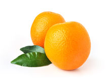 Two oranges isolated on white background. Two juicy organic oranges isolated on white background Royalty Free Stock Photos