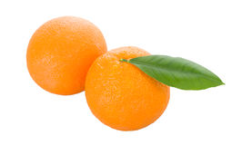 Two oranges with leaves Stock Image