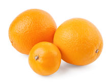Two oranges and mandarin. Isolated on white background royalty free stock images