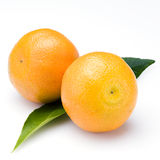 Two oranges on white. Two oranges with green leaves on white background Royalty Free Stock Photos
