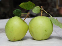 Two organic apples. Picture of a Two organic apples Royalty Free Stock Photos