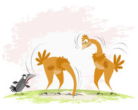 Two ostriches and crow Royalty Free Stock Photos