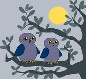 Two Owls. Sitting together on a branch in the moonlight Royalty Free Stock Image