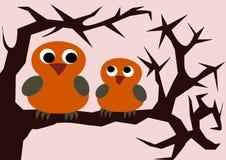 Two Owls Stock Photos