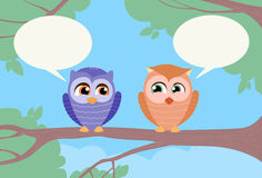 Two Owls Chat Communication Sitting on Branch Stock Photography
