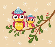 Two owls in hats sit on a branch. Royalty Free Stock Photography