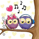 Two owls with headphones Royalty Free Stock Images