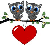 Two owls in love. Two sweet owl in love Royalty Free Stock Images