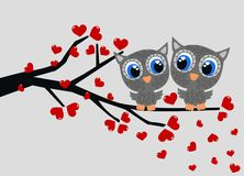 Two owls in love Stock Photos