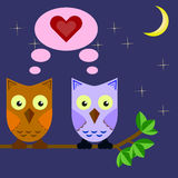Two owls in love sitting on a tree branch in the night sky Stock Image