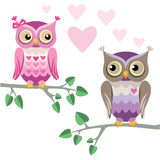 Two owls in love Royalty Free Stock Image