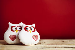 Two owls in love Stock Image