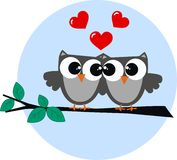 Two owls in love. Valentines day or other love celebration Royalty Free Stock Photos
