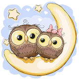 Two Owls on the moon Stock Photography