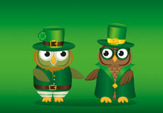 Two owls in national costume at Patrick`s Day holding hands. Stock Photography