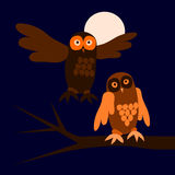 Two owls in night at full moon. Royalty Free Stock Images