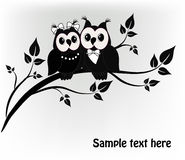 Two owls tree Royalty Free Stock Photos