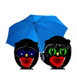 Two owls with umbrella Stock Images