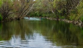 Free Two Paddle Boarders On The Roanoke River Stock Image - 113673441
