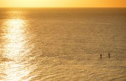 Paddle boarders. Two paddleboarders paddling in the English Channel at sunrise stock photo