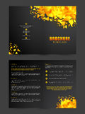 Two page Brochure, Template or Flyer for Business. Golden abstract design decorated, Two Page Brochure, Template or Flyer presentation for your Business Stock Photo