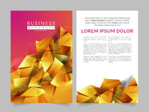 Two Page Brochure, Template or Flyer for Business. Golden abstract design decorated, Professional Brochure, Template or Flyer with front and back page Royalty Free Stock Photo