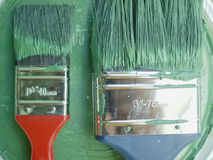 Two paintbrush in green tint. Two paintbrush in a very saturate image Royalty Free Stock Image