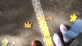 Two pair of legs walk on asphalt at autumn. stock video