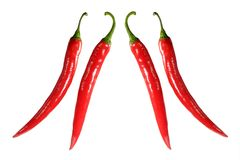 Two pairs of chilies Royalty Free Stock Image