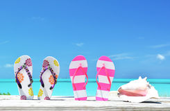 Two pairs of flip-flops and a shell Royalty Free Stock Image