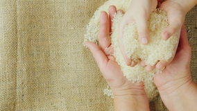 Two pairs of hands - an adult woman and child hold a grain of rice. Hands adult woman holding a grain of rice, over them as children`s hands holding rice. Slow stock video footage