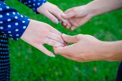 Two pairs of hands in love tenderly hold together on green grass background Stock Photography