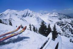 Two Pairs Of Skis On Edge Skirun. Closeup of two pairs of cropped skis on edge of skirun Royalty Free Stock Photos