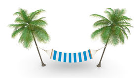 Two palm and hammock Royalty Free Stock Photos