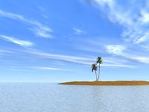 Two palm tree. S on island on a background of the clear sky vector illustration