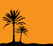 Two palm trees. Illustration. Palm extremly detailed, all leafs are very detailed Royalty Free Stock Photography