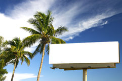 Two Palm trees and billboard. Tropical palm trees and a billboard in the late afternoon sun. The golden hour. Advertise your holiday specials stock photography