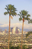 Two palm trees, Los Angeles and snowy Mount Baldy as seen from the Baldwin Hills, Los Angeles, California Stock Image