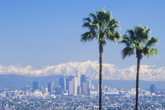 Two palm trees, Los Angeles and snowy Mount Baldy as seen from the Baldwin Hills, Los Angeles, California Royalty Free Stock Photos