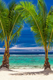 Two palm trees over stunning blue lagoon, Cook Islands Stock Photography