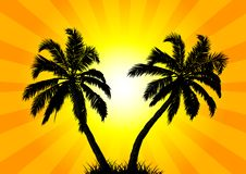 Two palms in the background of the sun. Vector art illustration Royalty Free Stock Photography