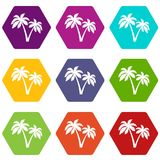 Two palms icon set color hexahedron Stock Photo