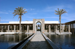 Two palms and modern building. Royalty Free Stock Photos